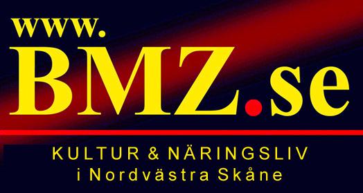 BMZ_LOGO3